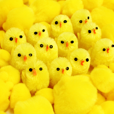 chicks-pompoms