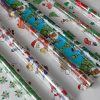 BI0215 Festive Assortment PK06