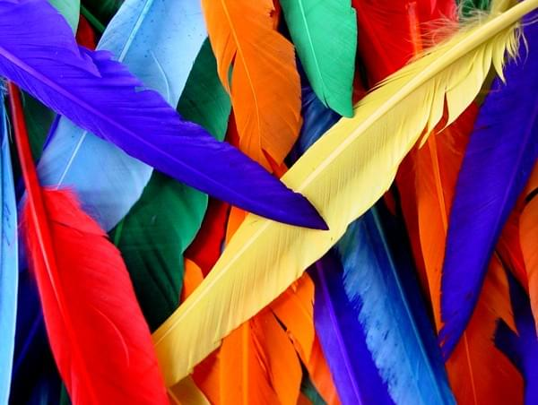 BI2590 Indian Feathers 30cm pack of 25
