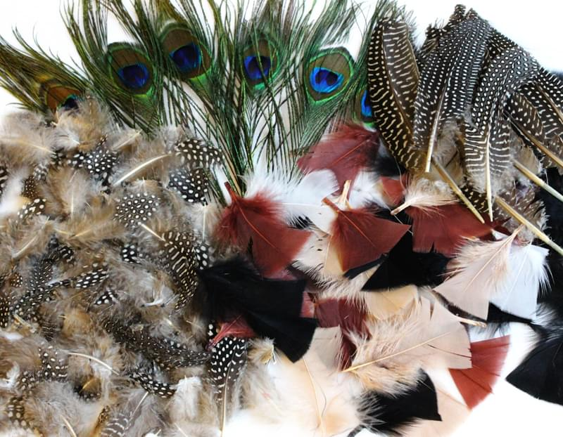Natural feathers assorted bumper pack bright ideas crafts for Natural feathers for crafts