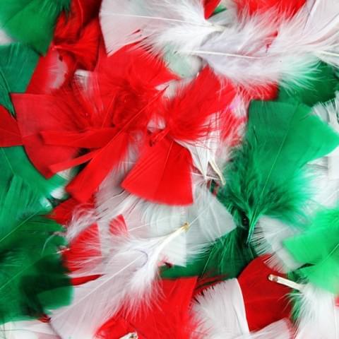 BI3679 Festive Feathers Christmas Feathers