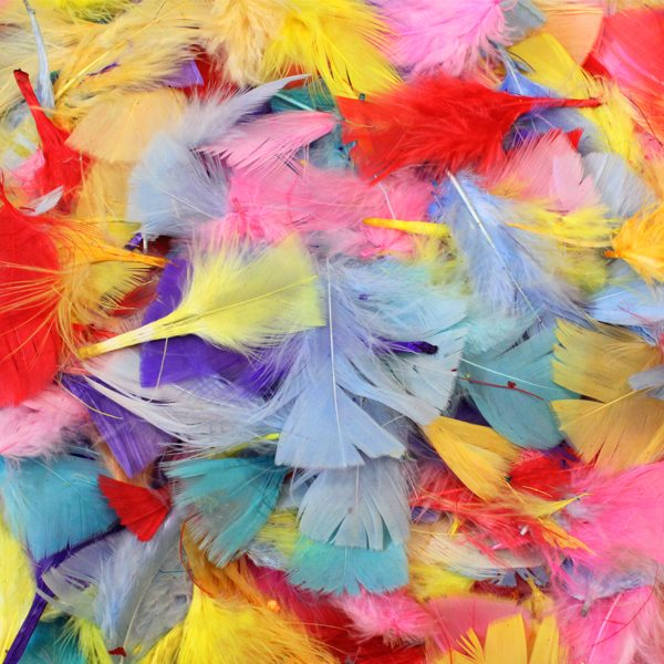 Colour Feathers 50g Assorted
