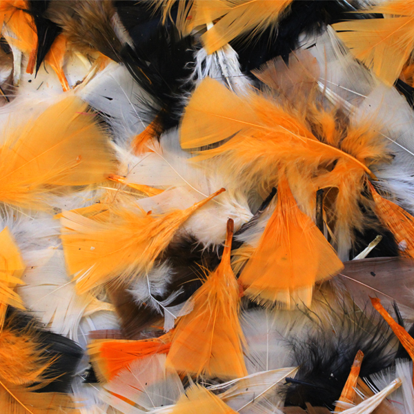 Natural Halloween Decorations: Halloween Natural Feathers 50g