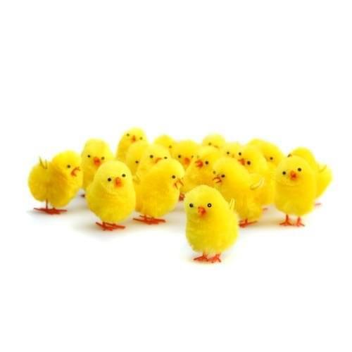 BI7518 Fluffy Chicks