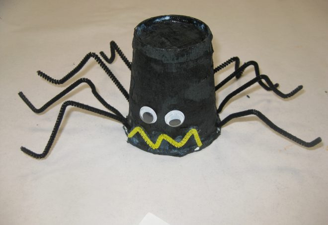 Spider Cup