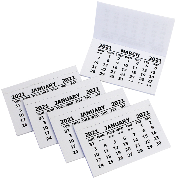 2021 Calendar Tabs PK50